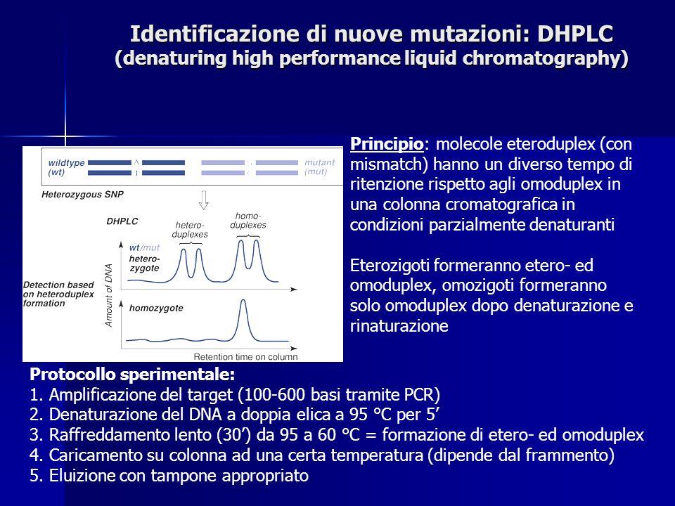 Identificazione di nuove mutazioni: DHPLC (denaturing high performance liquid chromatography)