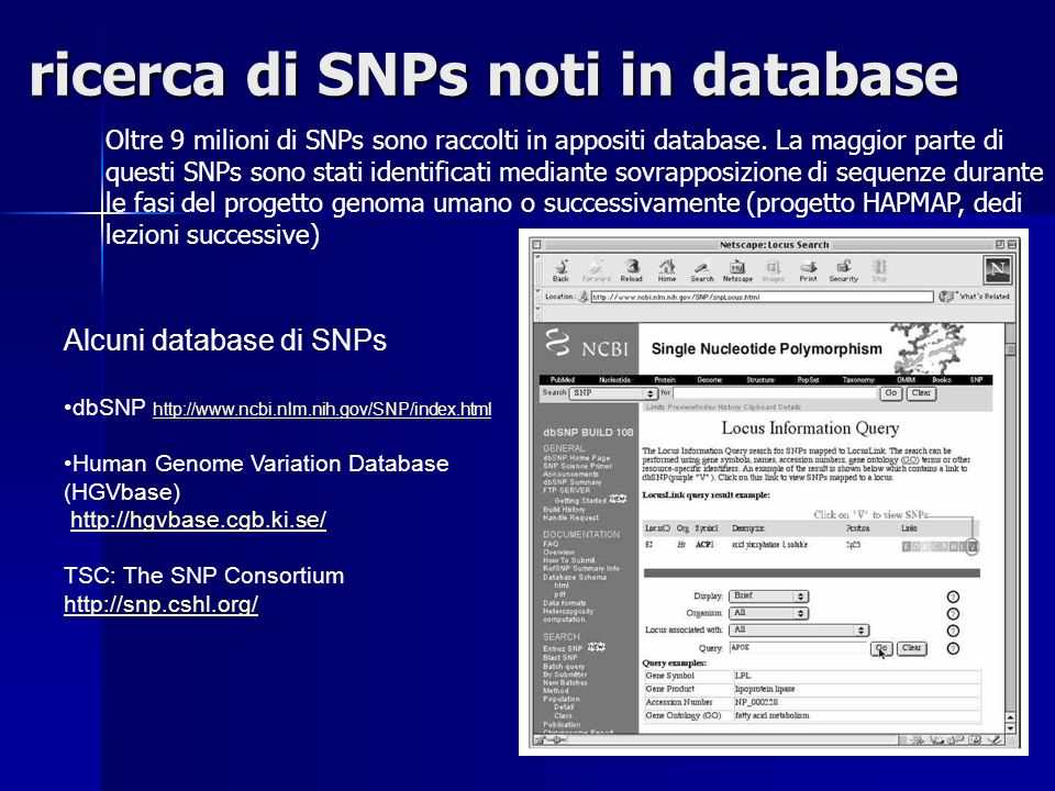 ricerca di SNPs noti in database