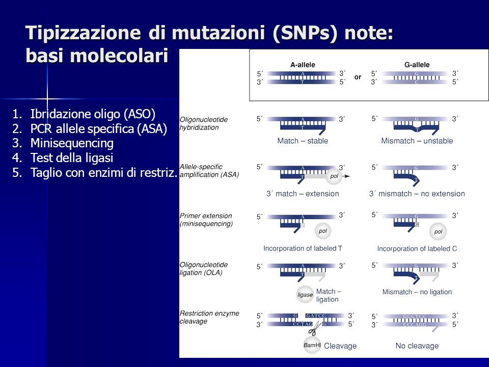 Tipizzazione di mutazioni (SNPs) note: basi molecolari