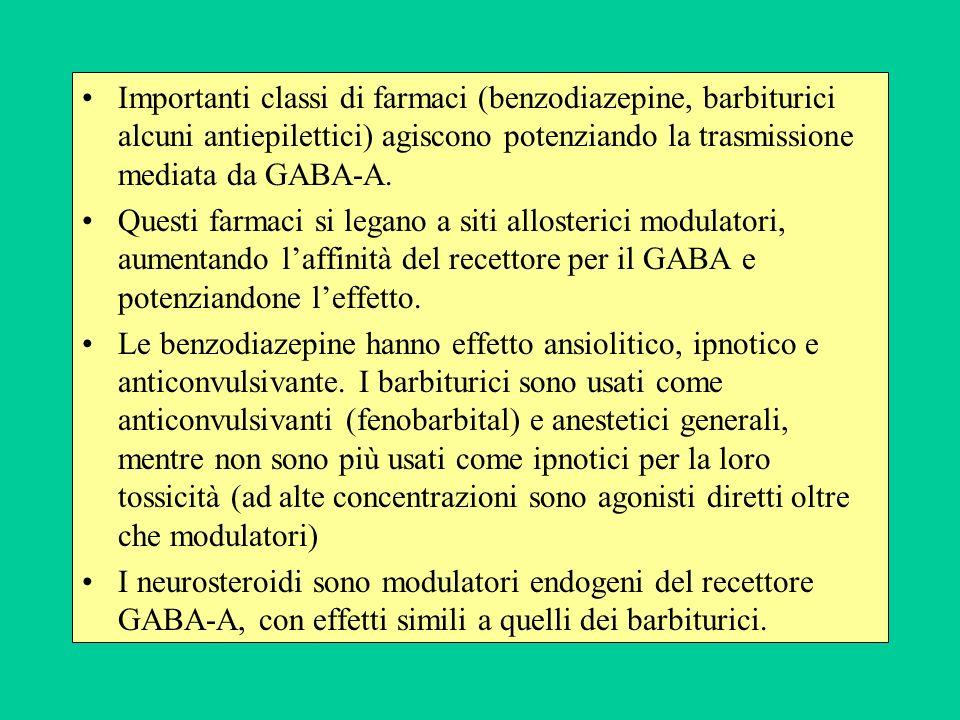 Importanti classi di farmaci (benzodiazepine, barbiturici alcuni antiepilettici) agiscono potenziando la trasmissione mediata da GABA-A.