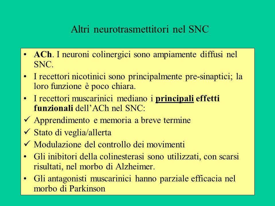 Altri neurotrasmettitori nel SNC