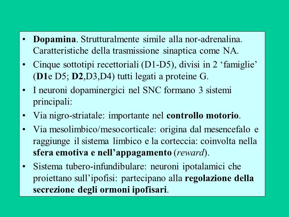 Dopamina. Strutturalmente simile alla nor-adrenalina