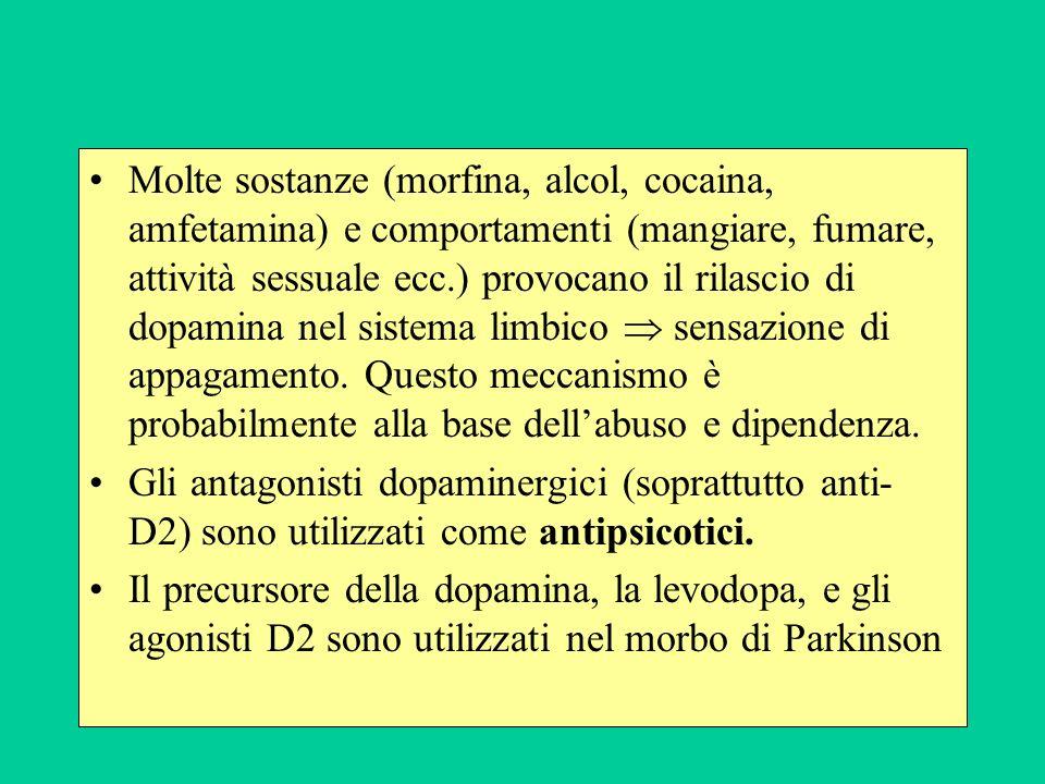 Molte sostanze (morfina, alcol, cocaina, amfetamina) e comportamenti (mangiare, fumare, attività sessuale ecc.) provocano il rilascio di dopamina nel sistema limbico  sensazione di appagamento. Questo meccanismo è probabilmente alla base dell'abuso e dipendenza.