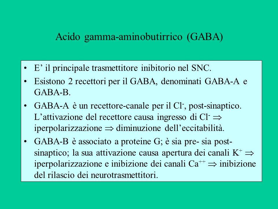 Acido gamma-aminobutirrico (GABA)