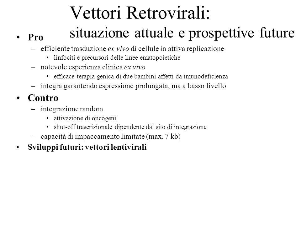 Vettori Retrovirali: situazione attuale e prospettive future