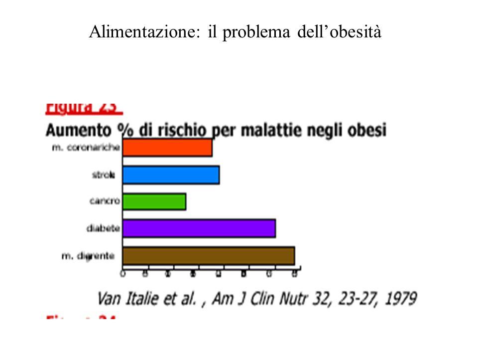 Alimentazione: il problema dell'obesità