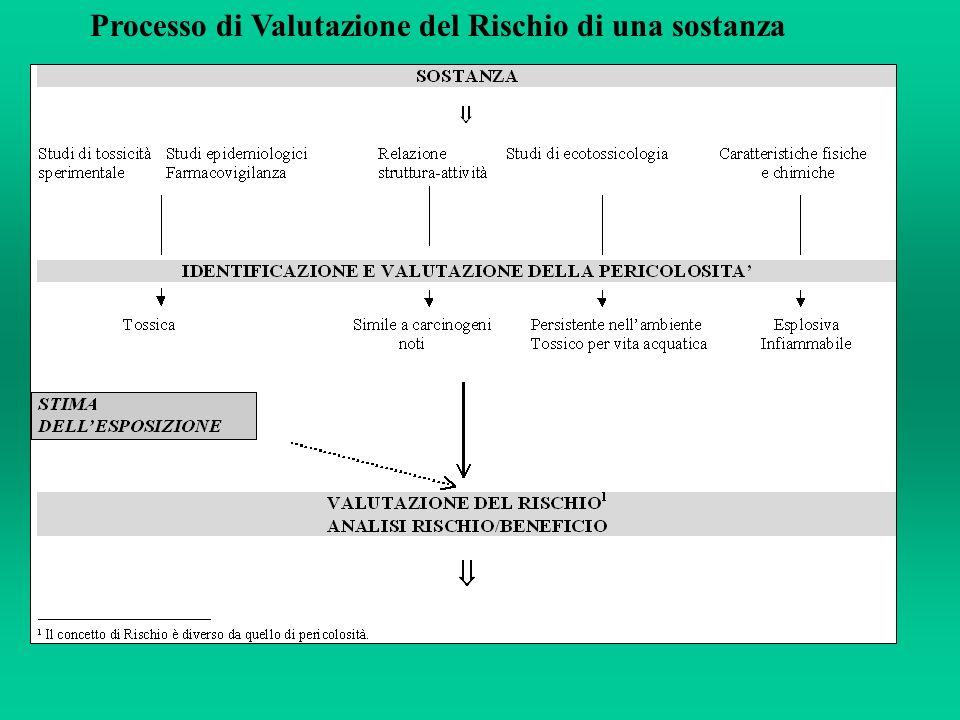 Processo di Valutazione del Rischio di una sostanza