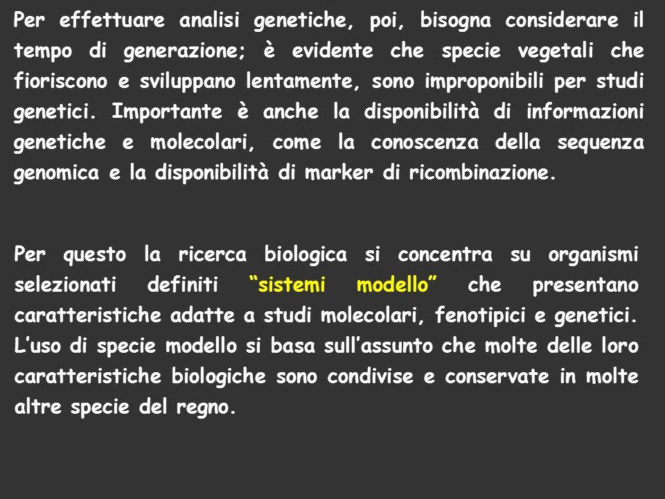Per effettuare analisi genetiche, poi, bisogna considerare il tempo di generazione; è evidente che specie vegetali che fioriscono e sviluppano lentamente, sono improponibili per studi genetici. Importante è anche la disponibilità di informazioni genetiche e molecolari, come la conoscenza della sequenza genomica e la disponibilità di marker di ricombinazione.