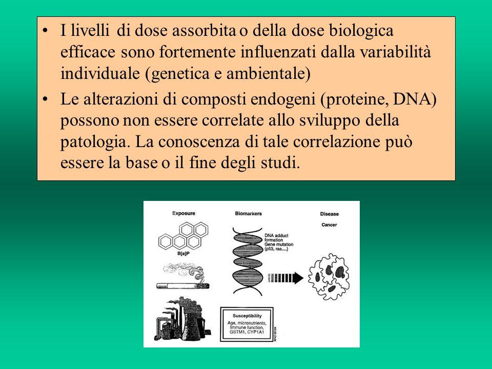 I livelli di dose assorbita o della dose biologica efficace sono fortemente influenzati dalla variabilità individuale (genetica e ambientale)