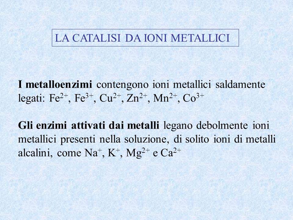 LA CATALISI DA IONI METALLICI