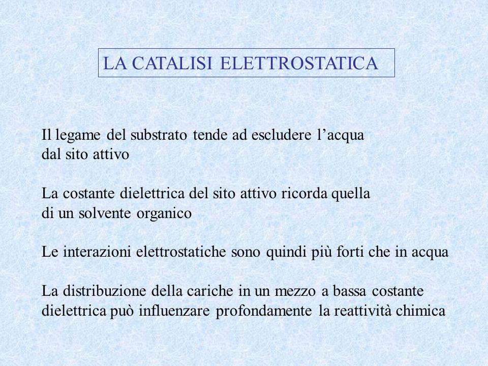 LA CATALISI ELETTROSTATICA
