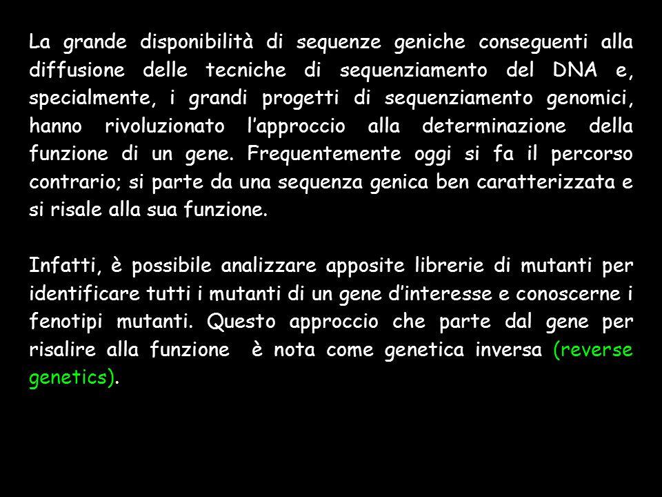 La grande disponibilità di sequenze geniche conseguenti alla diffusione delle tecniche di sequenziamento del DNA e, specialmente, i grandi progetti di sequenziamento genomici, hanno rivoluzionato l'approccio alla determinazione della funzione di un gene. Frequentemente oggi si fa il percorso contrario; si parte da una sequenza genica ben caratterizzata e si risale alla sua funzione.