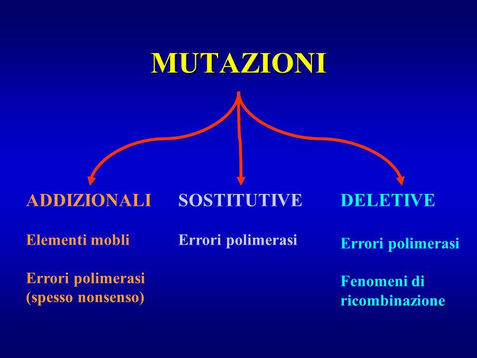 MUTAZIONI ADDIZIONALI SOSTITUTIVE DELETIVE Elementi mobli
