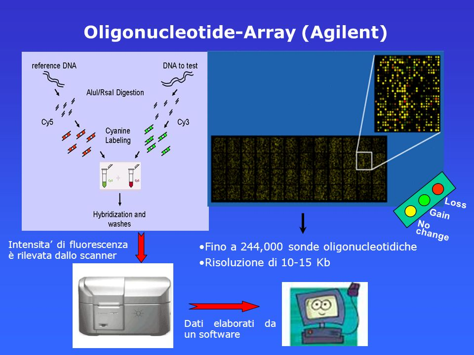 Oligonucleotide-Array (Agilent)