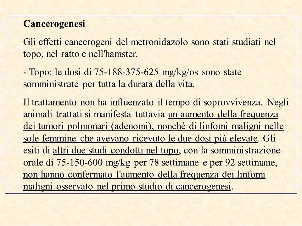 Cancerogenesi Gli effetti cancerogeni del metronidazolo sono stati studiati nel topo, nel ratto e nell hamster.