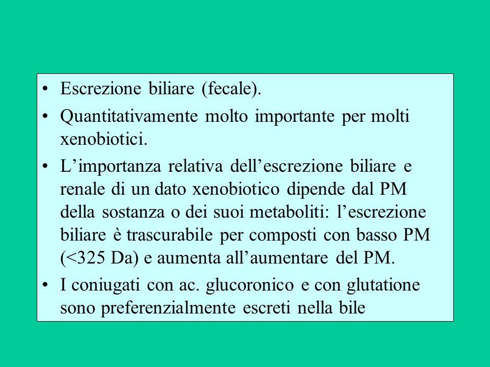 Escrezione biliare (fecale).
