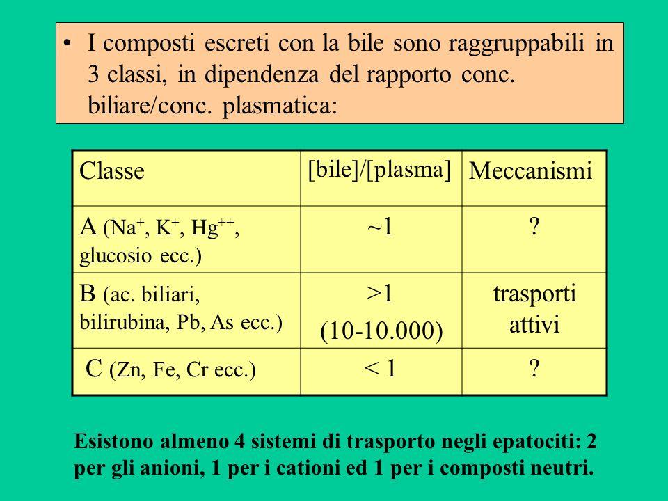 A (Na+, K+, Hg++, glucosio ecc.) ~1