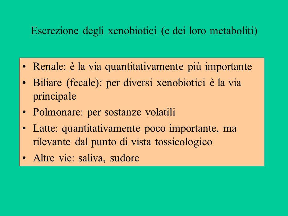 Escrezione degli xenobiotici (e dei loro metaboliti)