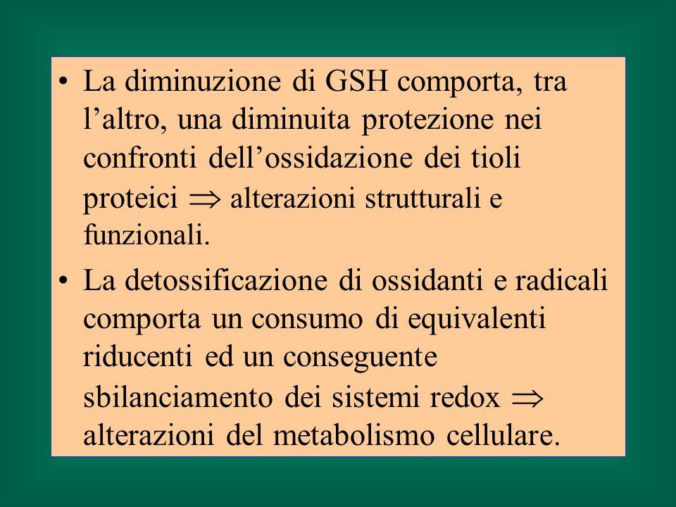 La diminuzione di GSH comporta, tra l'altro, una diminuita protezione nei confronti dell'ossidazione dei tioli proteici  alterazioni strutturali e funzionali.