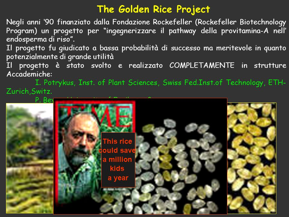 The Golden Rice Project