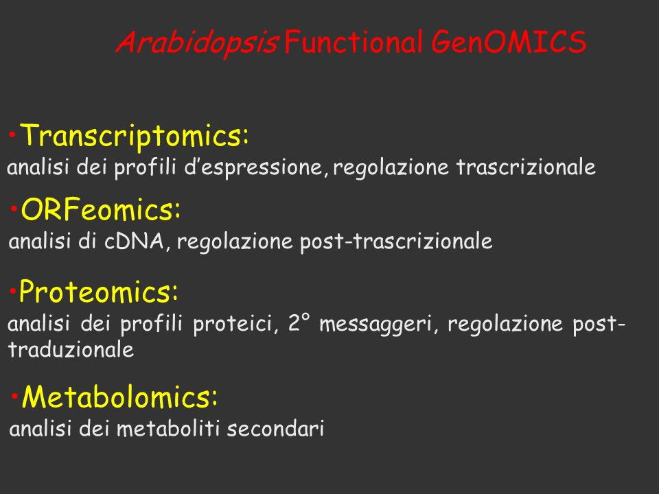 Arabidopsis Functional GenOMICS