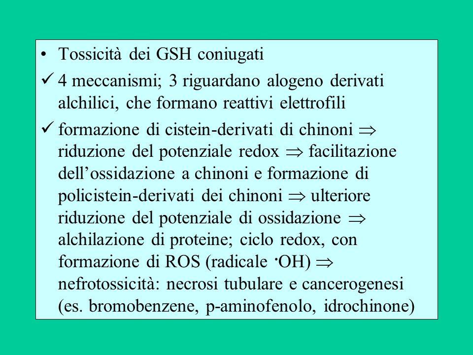 Tossicità dei GSH coniugati