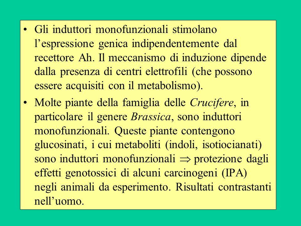 Gli induttori monofunzionali stimolano l'espressione genica indipendentemente dal recettore Ah. Il meccanismo di induzione dipende dalla presenza di centri elettrofili (che possono essere acquisiti con il metabolismo).