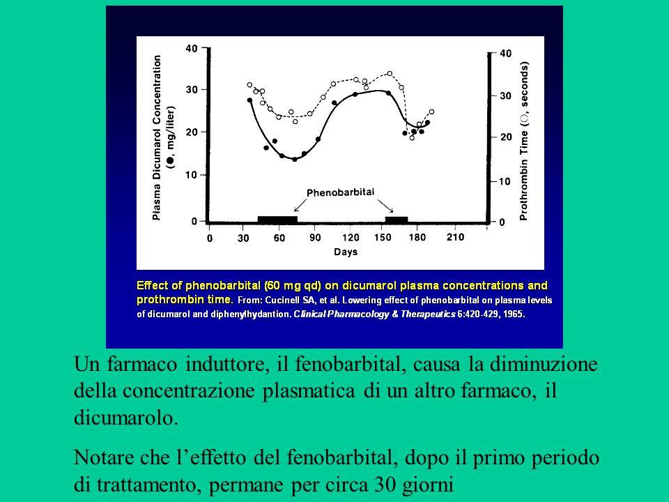 Un farmaco induttore, il fenobarbital, causa la diminuzione della concentrazione plasmatica di un altro farmaco, il dicumarolo.