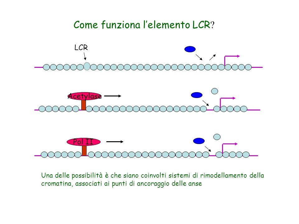 Come funziona l'elemento LCR