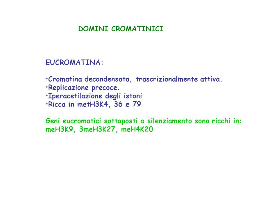 DOMINI CROMATINICI EUCROMATINA: Cromatina decondensata, trascrizionalmente attiva. Replicazione precoce.