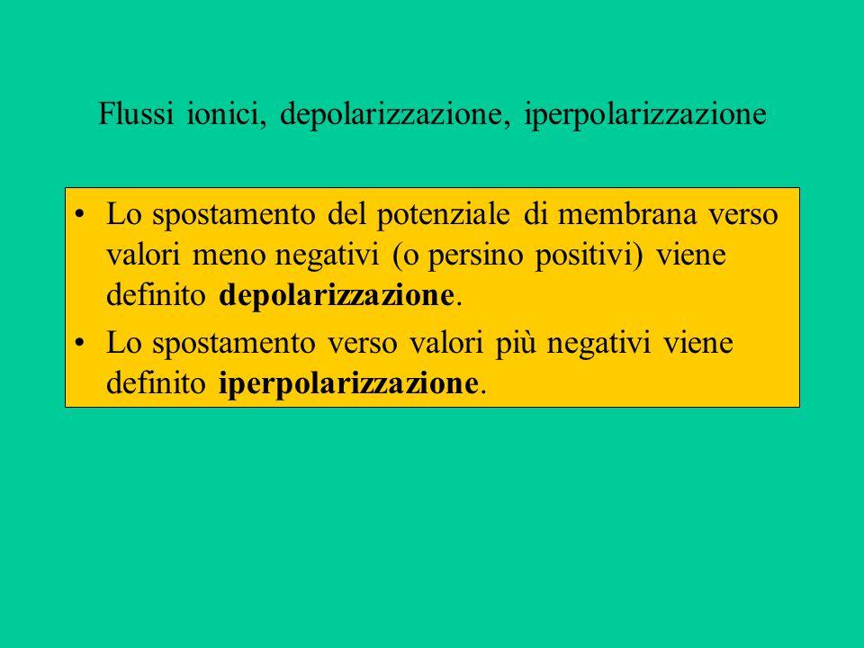 Flussi ionici, depolarizzazione, iperpolarizzazione
