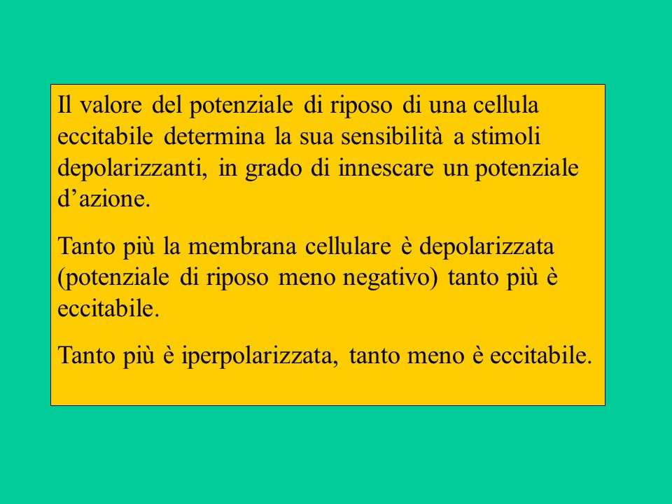 Il valore del potenziale di riposo di una cellula eccitabile determina la sua sensibilità a stimoli depolarizzanti, in grado di innescare un potenziale d'azione.