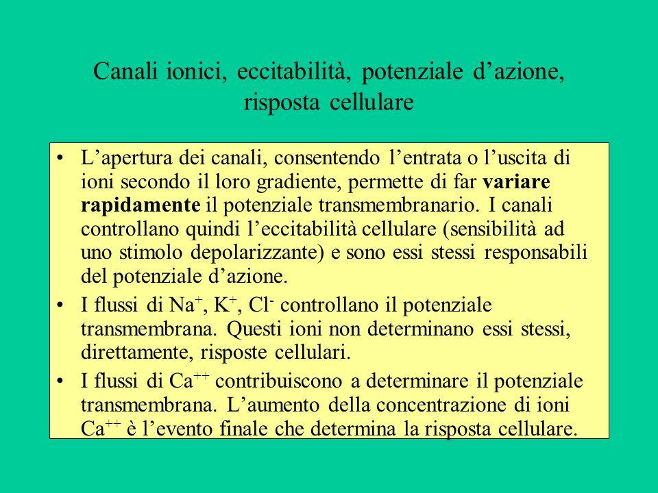 Canali ionici, eccitabilità, potenziale d'azione, risposta cellulare