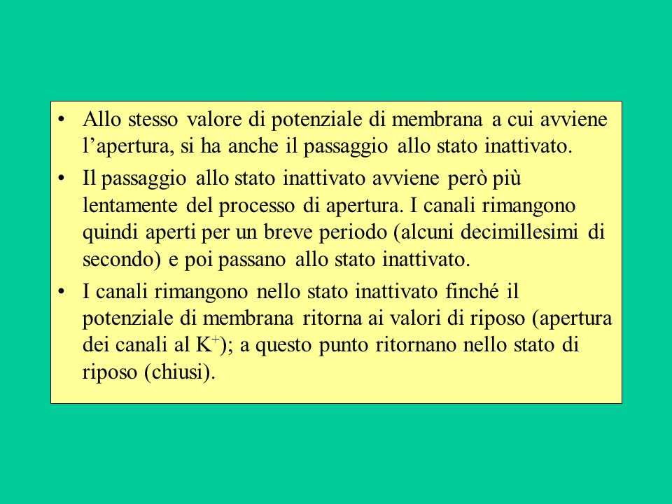 Allo stesso valore di potenziale di membrana a cui avviene l'apertura, si ha anche il passaggio allo stato inattivato.