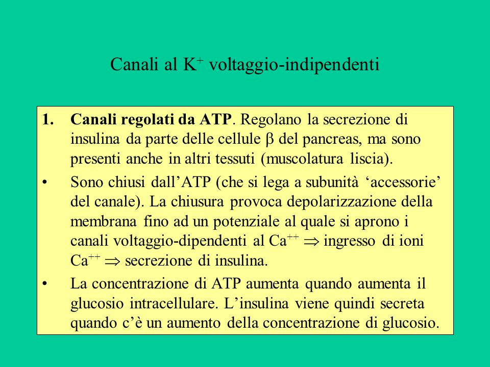 Canali al K+ voltaggio-indipendenti