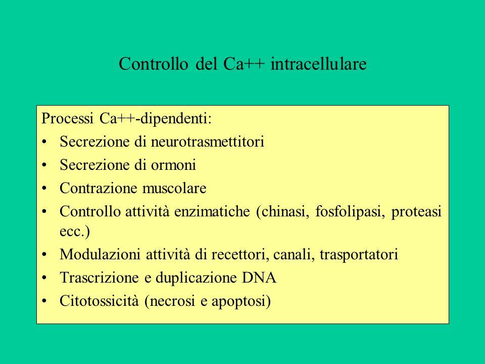 Controllo del Ca++ intracellulare