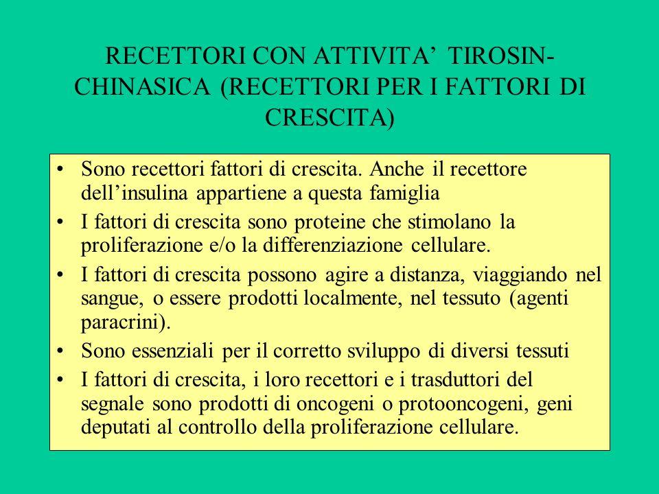 RECETTORI CON ATTIVITA' TIROSIN-CHINASICA (RECETTORI PER I FATTORI DI CRESCITA)