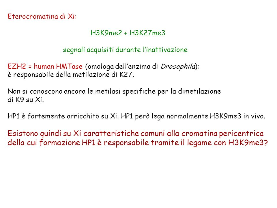 della cui formazione HP1 è responsabile tramite il legame con H3K9me3
