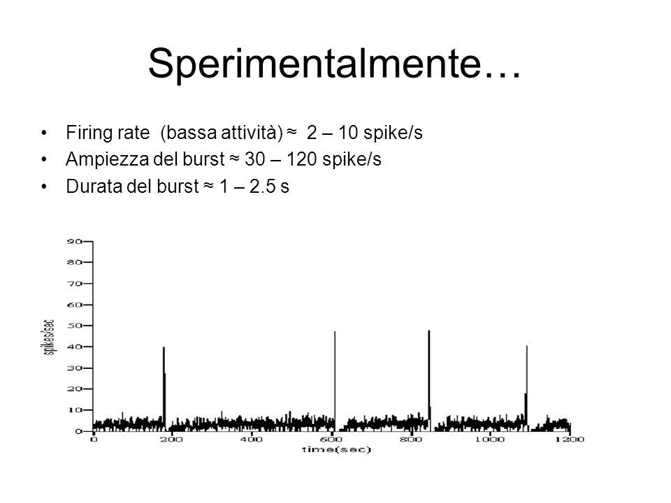 Sperimentalmente… Firing rate (bassa attività) ≈ 2 – 10 spike/s