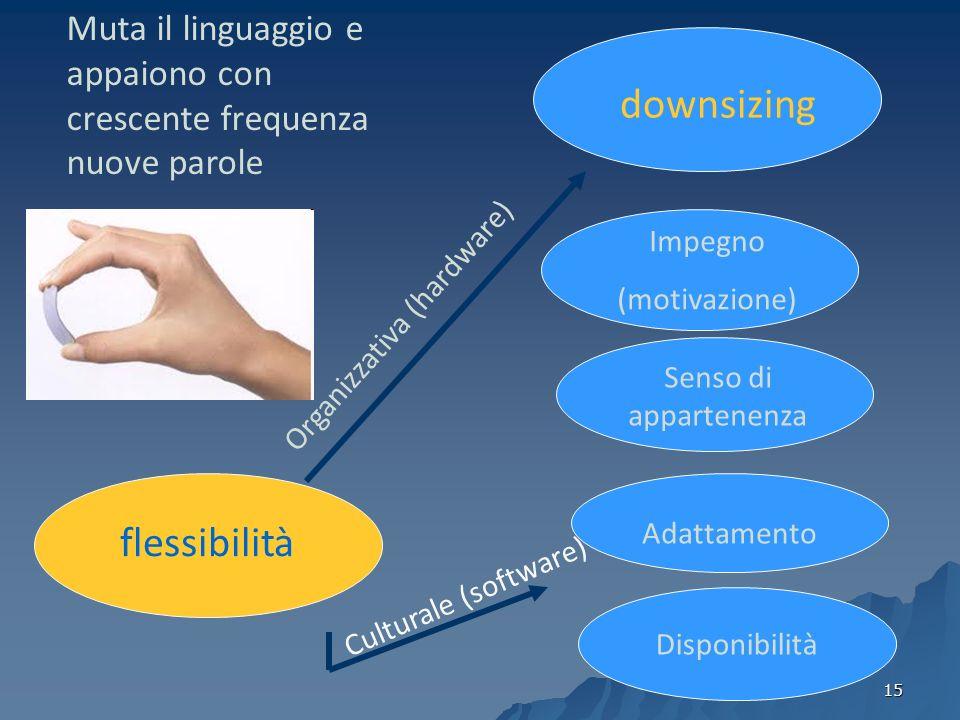 downsizing flessibilità