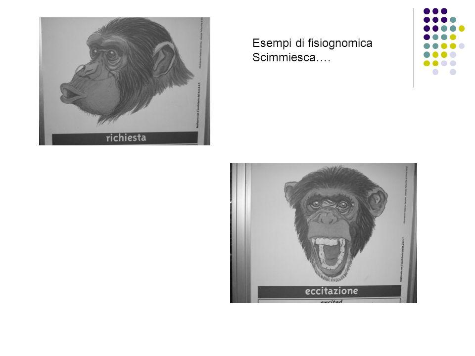 Esempi di fisiognomica