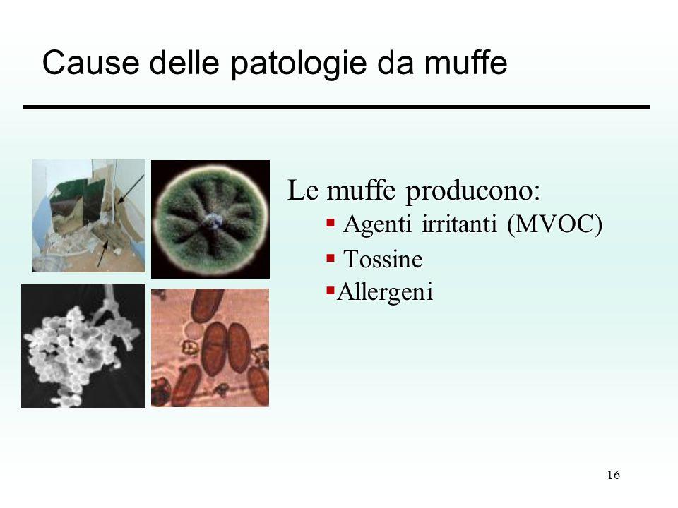 Cause delle patologie da muffe