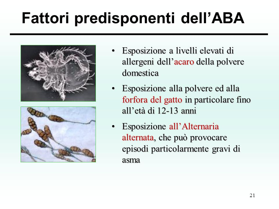 Fattori predisponenti dell'ABA