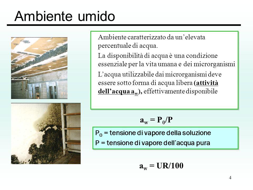 Ambiente umido aw = P0/P aw = UR/100