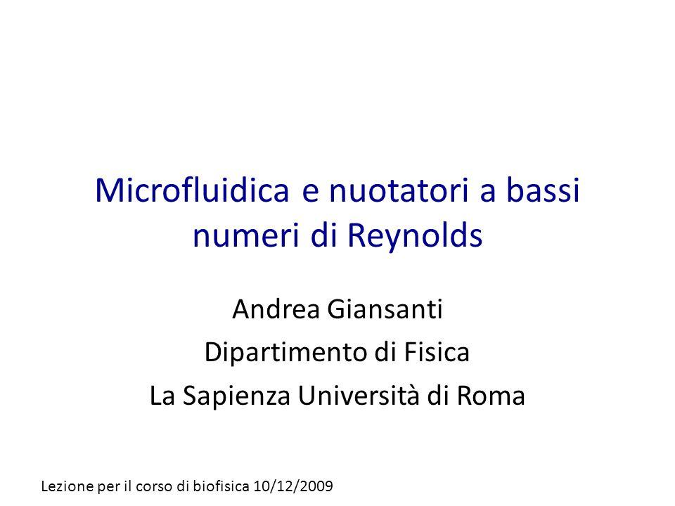 Microfluidica e nuotatori a bassi numeri di Reynolds