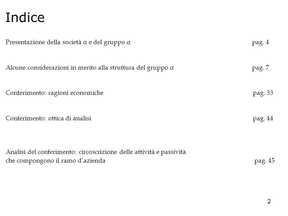 Indice Presentazione della società α e del gruppo α pag. 4