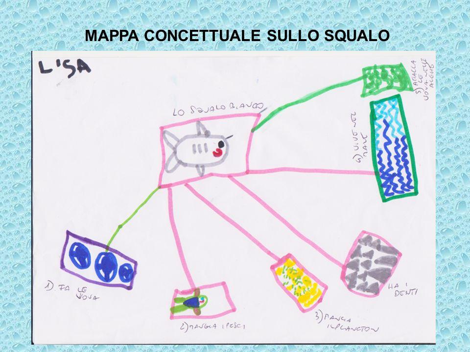 MAPPA CONCETTUALE SULLO SQUALO