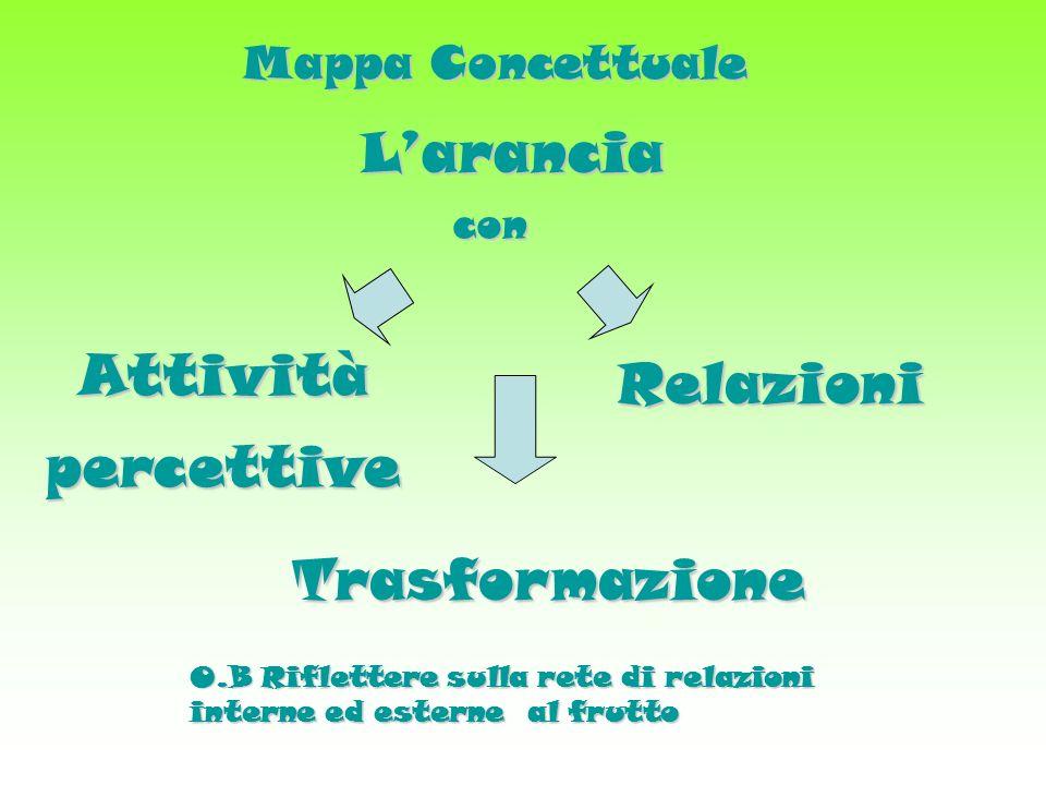 Attività percettive Relazioni Trasformazione