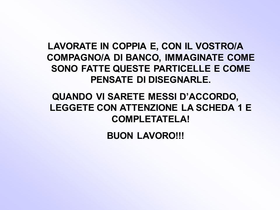 LAVORATE IN COPPIA E, CON IL VOSTRO/A COMPAGNO/A DI BANCO, IMMAGINATE COME SONO FATTE QUESTE PARTICELLE E COME PENSATE DI DISEGNARLE.