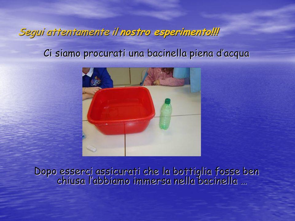 Segui attentamente il nostro esperimento!!!
